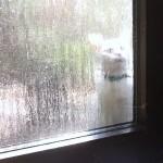 Lass mich rein damit ich wieder raus kann.