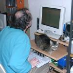 Trienchen blockiert den Tastaturplatz