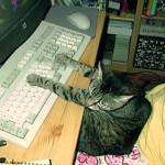 Trienchen am Computer