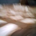 20080104_IMG_0220