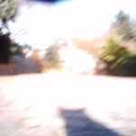 20080205_IMG_0026
